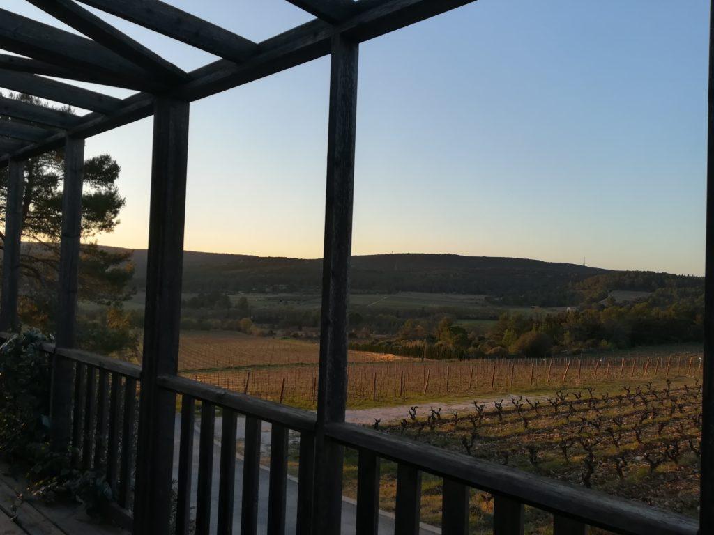 Vue sur les vignes du Domaine chemin des Rêves