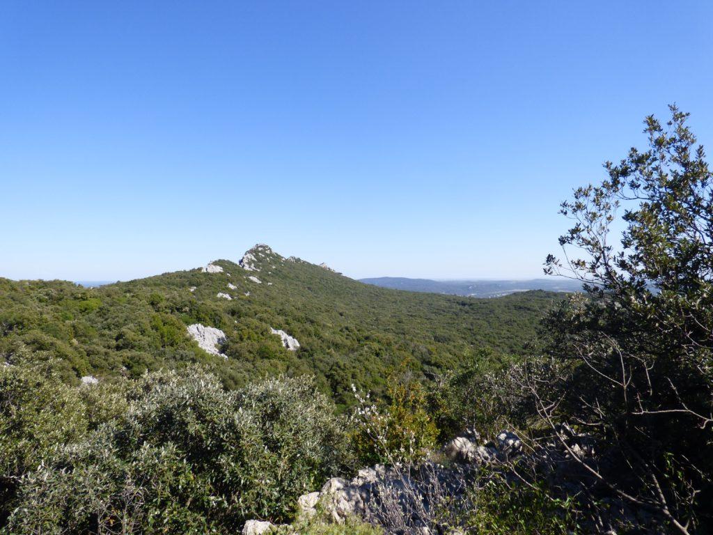 Panorama de la plaine héraultaise depuis une randonnée pour le Pic Saint Loup