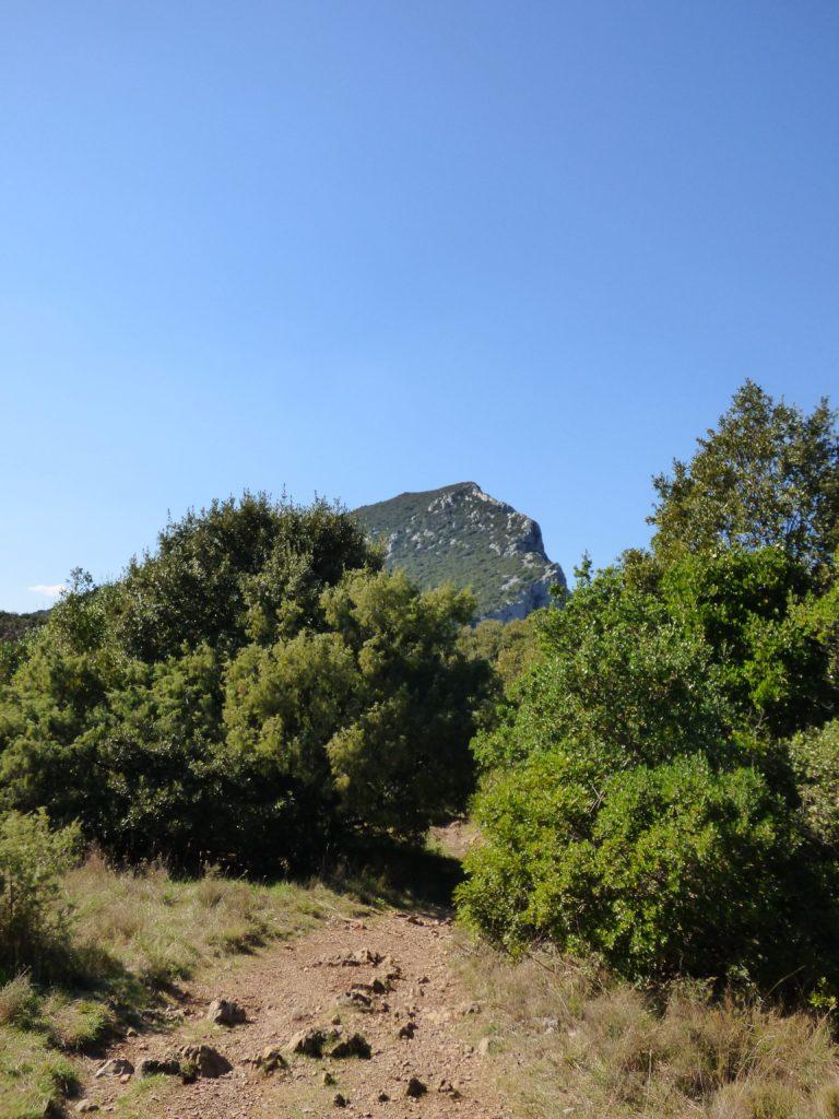 Vue sur Pic Saint-Loup