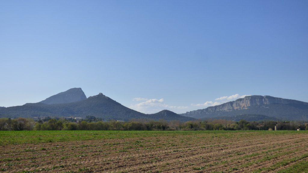 Pic Saint-Loup et l'Hortus
