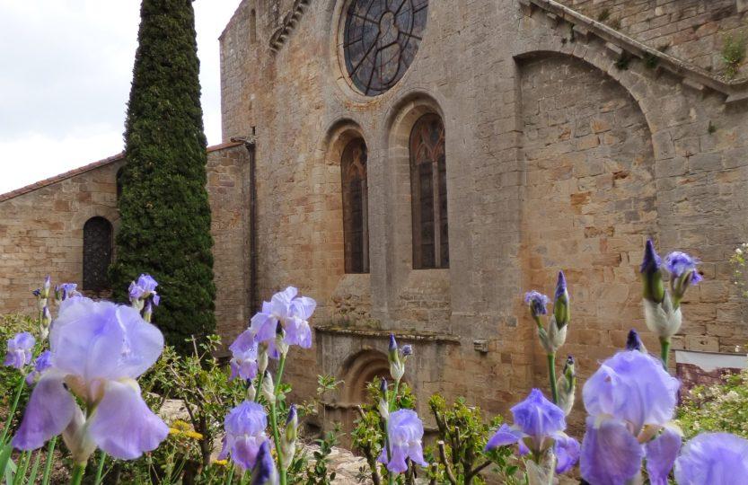 Abbaye de Fontfroide en fleurs
