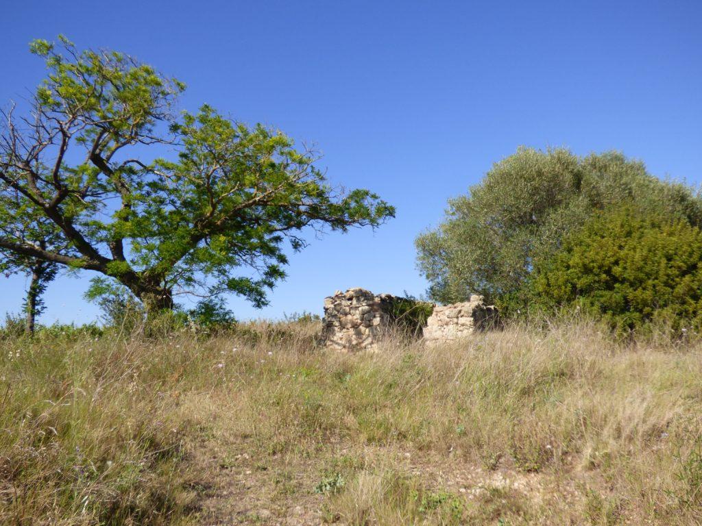 Ruines d'un mazet à Pinet